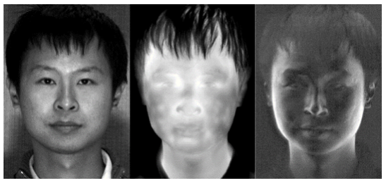 Visible Thermal Infrared and IR Polarimetric Image of Face Facial Recongnition